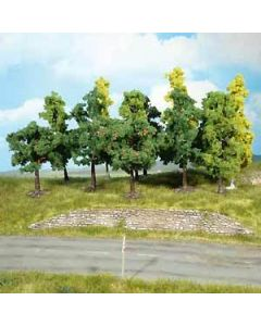 Løvtrær, 50 trees, 8-13 Cm, HEK1360