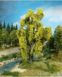 Løvtrær, , HEK1901