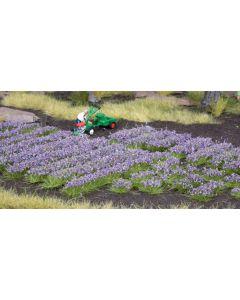 Blomster og planter, , NOC07136