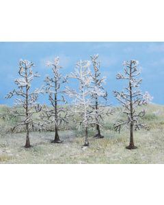 Løvtrær, heki-2105, HEK2105