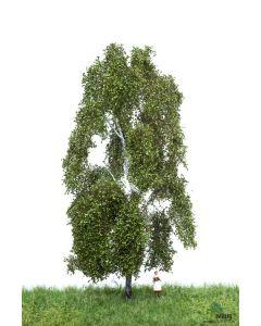 Løvtrær, , MBR51-2301