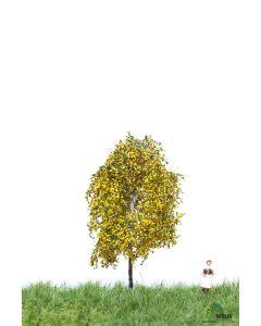 Løvtrær, , MBR52-2101