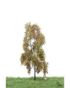 Løvtrær, , MBR52-2301