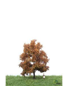 Løvtrær, , MBR52-2202