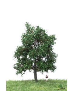Løvtrær, , MBR51-2203