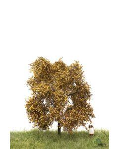 Løvtrær, , MBR52-2103