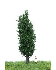 Løvtrær, , MBR51-2207