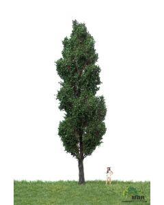 Løvtrær, , MBR51-2407