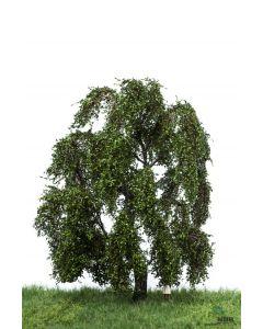 Løvtrær, , MBR51-2309