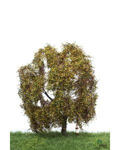 Løvtrær, , MBR52-2309
