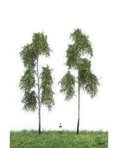 Løvtrær, , MBR51-2313