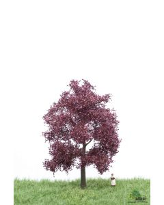 Løvtrær, , MBR51-2214