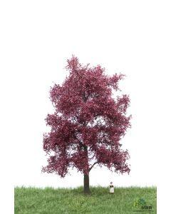 Løvtrær, , MBR51-2314