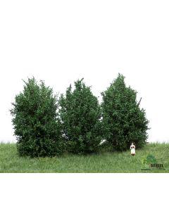 Busker, MBR-Model-50-4001-high-bushes-dark-green-3-pcs, MBR50-4001