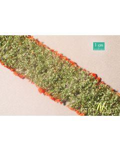 Blomster og planter, , MIN998-23