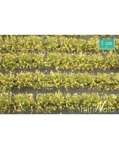Blomster og planter, Blomstereng-striper, Gul, Stor Pakke, MIN767-22
