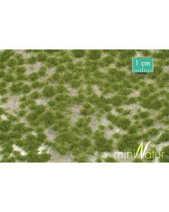 Statisk Gress, Gresstuster, Kort utgave, Tidlig Høst, Stor Pakke, MIN717-23