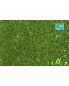 Gressmatter, Gressmatte, Eng, Sommer, 50 x 31,5 Cm, MIN720-22H