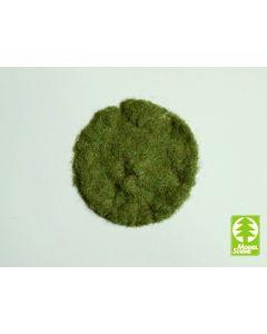 Statisk Gress, Statisk Gress, Tidlig Sommer, 2 mm, 50 g, MDS002-03