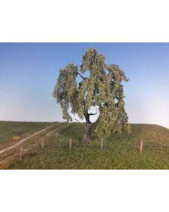 Løvtrær, Piletred, Stor, Sommer , MIN240-12