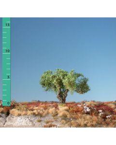 Løvtrær, Kopfweide, stor 3 stk, MIN241-02