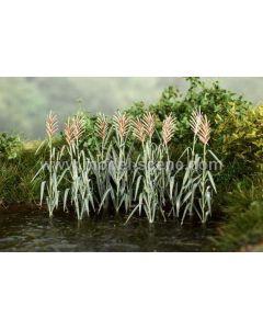 Blomster og planter, Siv, Fotoetset, 4 Stk, 1:45 - 48, MDSVG4-125