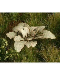 Blomster og planter, Borre, 1:32 - 35, MDSVG3-002