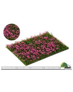 Blomster og planter, Blomster, Blomstrende Rosa, MBR50-2003