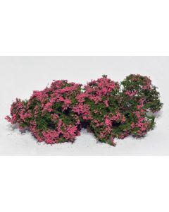 Busker, model-scene-701-93s-flowering-shrubs-pink, MDS701-93S